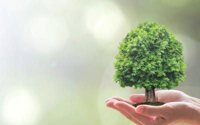 Big data confirma: La sociedad cada vez más implicada en la sostenibilidad del planeta